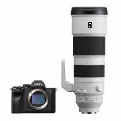 Sony A7R IV + 200-600mm f/5.6-6.3 G OSS