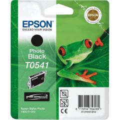Epson T0541 Epson R800 Foto Zwart