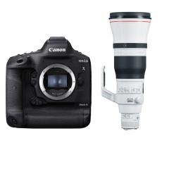 Canon EOS 1D X Mark III + EF 600mm f/4L IS III USM