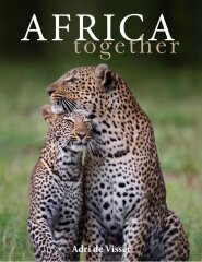 Boek Africa Together