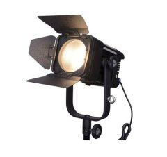 LedGo D300C bi-color fresnel (D30)