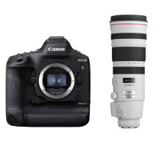 Canon EOS 1D X Mark III + EF 200-400mm f/4.0L IS USM Extender 1.4x