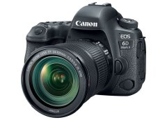 Canon EOS 6D Mark II + EF 24-105mm STM