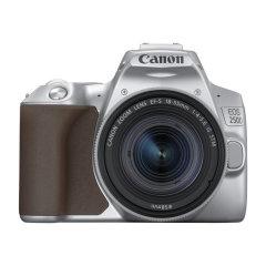 Canon EOS 250D DSLR Zilver + 18-55mm IS STM