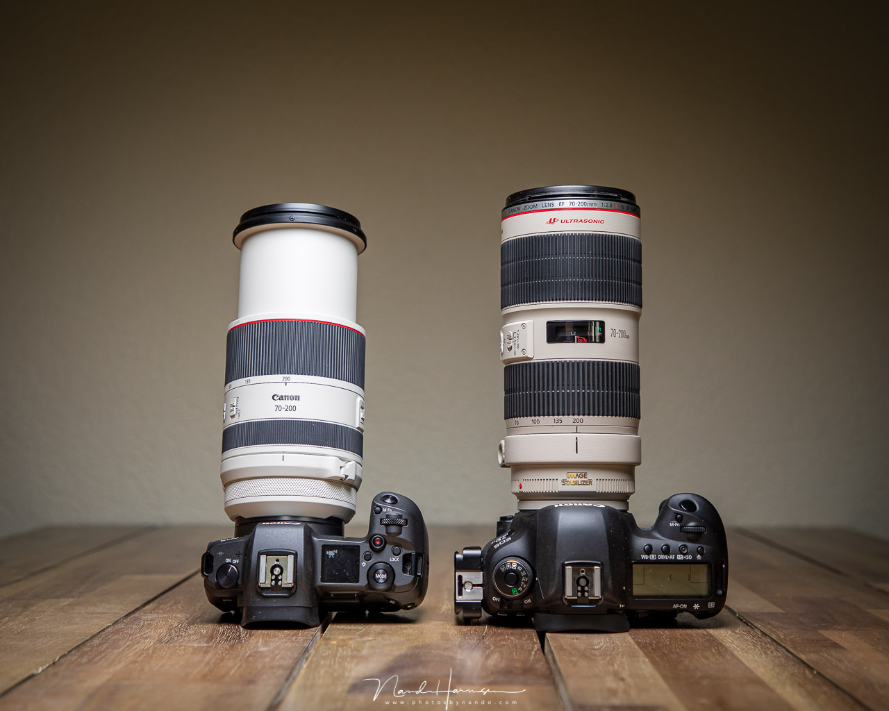Review Canon RF 70-200mm